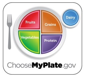 My-Plate-Michelle-Obama