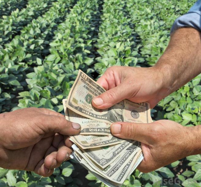 farmer-hands-exchanging-money-green-crops
